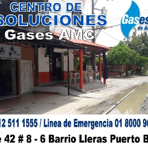 Gases AMC